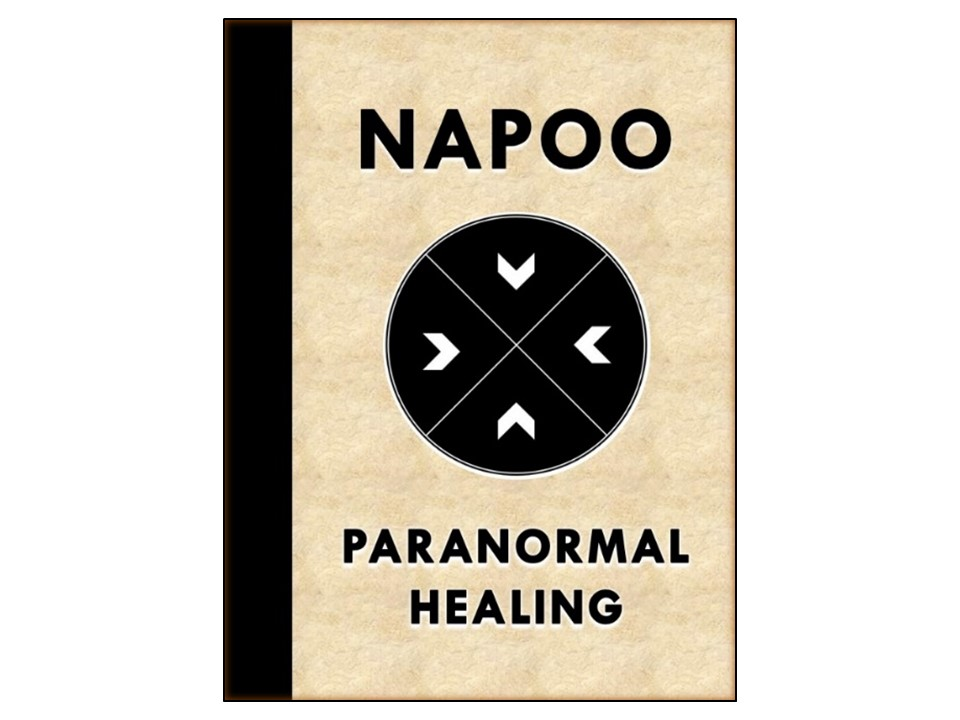 www.napoofoundation.com